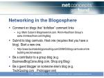 networking in the blogosphere