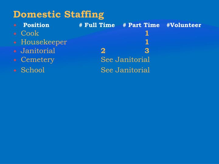 Domestic Staffing
