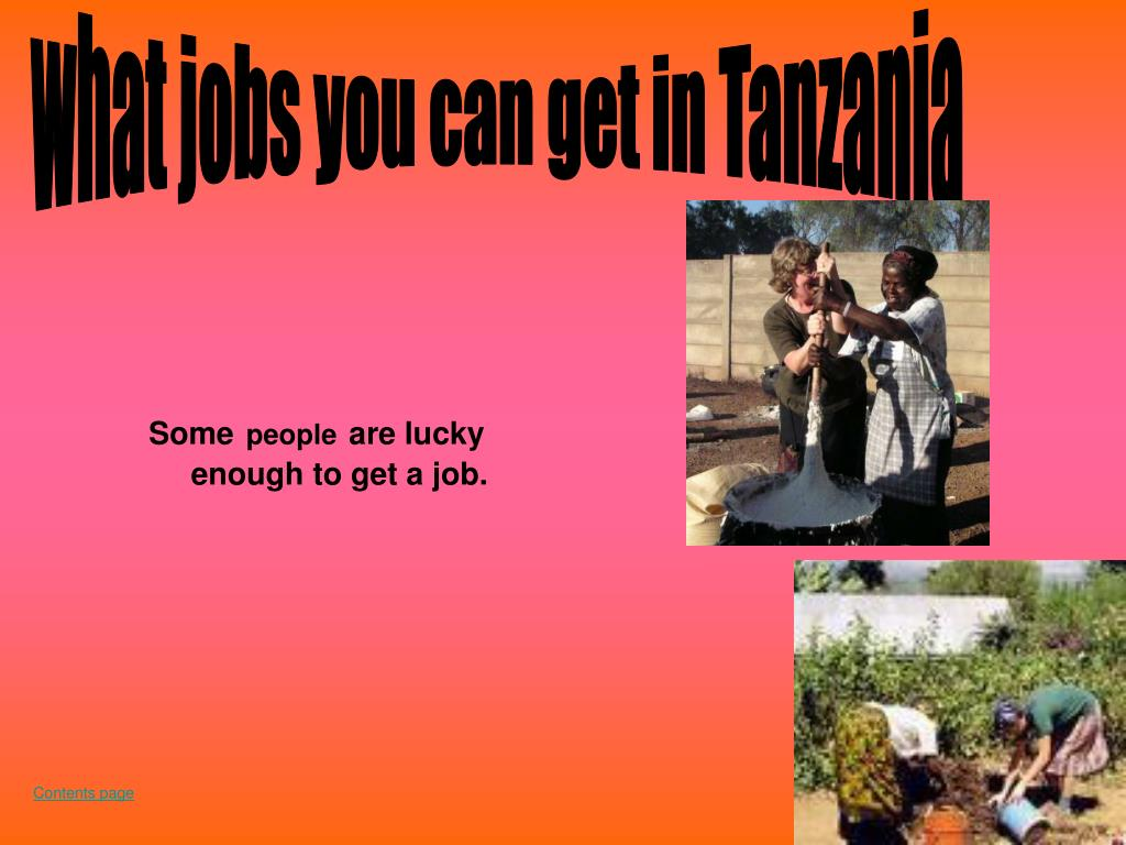 what jobs you can get in Tanzania