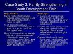 case study 3 family strengthening in youth development field