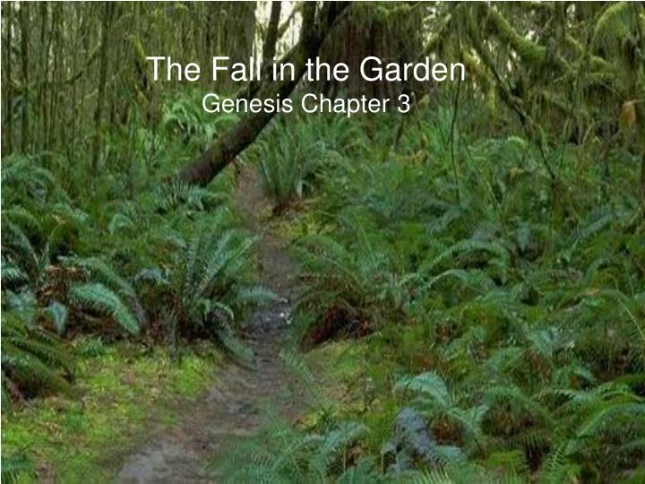the fall in the garden genesis chapter 3 n.
