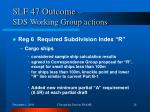 slf 47 outcome sds working group actions4