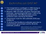 eschirichia coli o157 h7