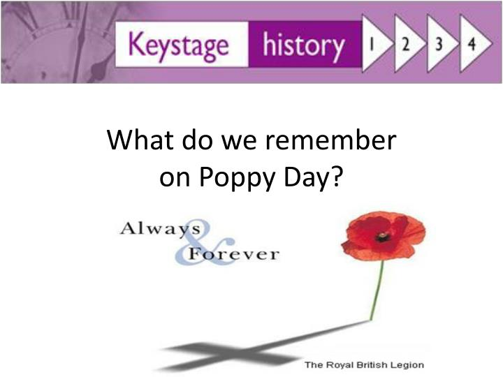 what do we remember on poppy day n.