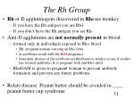 the rh group