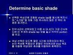 determine basic shade