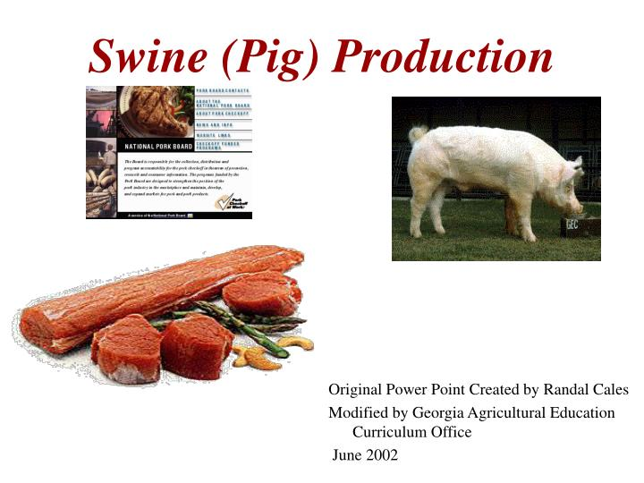 swine production 3 swine (pig) production china is the number one leading country in the swine production us is third leading country in swine production pork is.