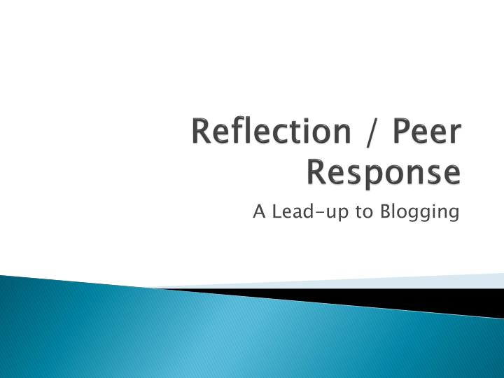 reflection peer response n.