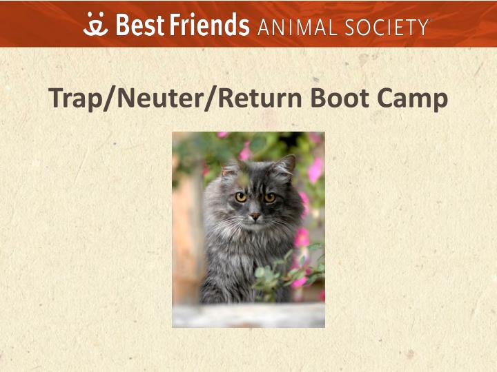 trap neuter return boot camp n.