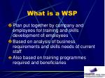 what is a wsp