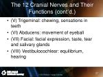 the 12 cranial nerves and their functions cont d1