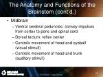 the anatomy and functions of the brainstem cont d2