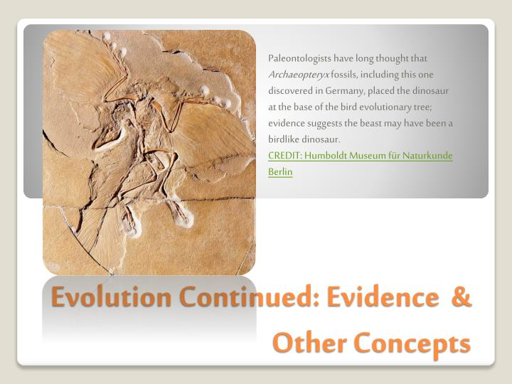 evolution continued evidence other concepts n.