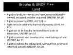 bropho undrip land