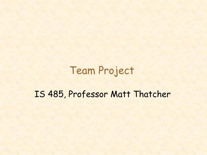 team project n.