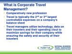 what is corporate travel management