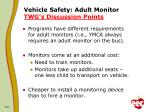 vehicle safety adult monitor twg s discussion points