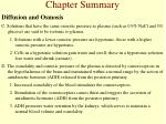 chapter summary6