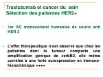 trastuzumab et cancer du sein s lection des patientes her2