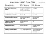 comparison of rflp and pcr