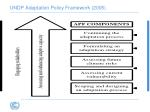 undp adaptation policy framework 2005