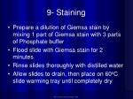 9 staining