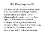 got chemosynthesis