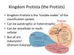 kingdom protista the protists