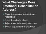 what challenges does emotional rehabilitation address