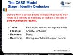 the cass model stage i identity confusion