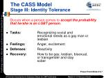 the cass model stage iii identity tolerance