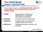the cass model stage v identity pride