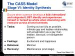the cass model stage vi identity synthesis