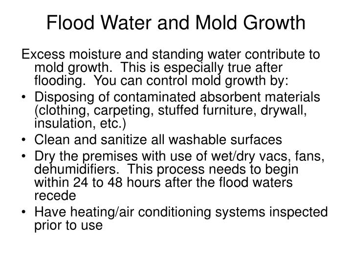 Flood Water and Mold Growth