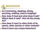 behavior1