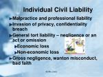 individual civil liability