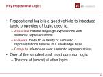 why propositional logic
