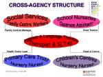 cross agency structure