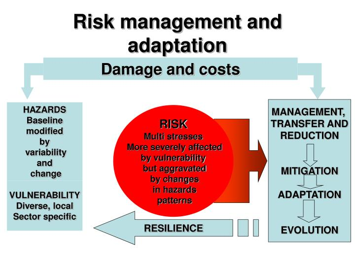 Risk management and adaptation
