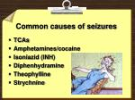 common causes of seizures