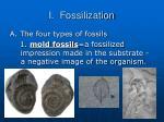 i fossilization