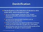 denitrification