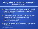 living things are intimately involved in elemental cycles