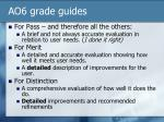 ao6 grade guides