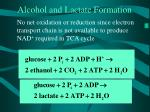 alcohol and lactate formation