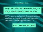 net reaction1