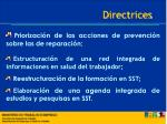 directrices1