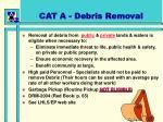 cat a debris removal