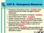 cat b emergency measures
