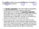 how are fermentation and anaerobic respiration needed to create the yogurt product